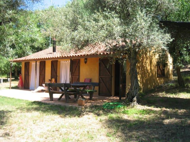 Montemateo Casa Ocre - Navahermosa - Talo