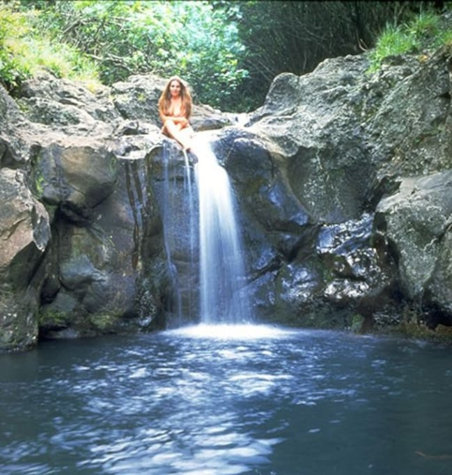 Spring Water Apartments: MauiRetreat DR Walk To Ocean, Waterfall, Amazing