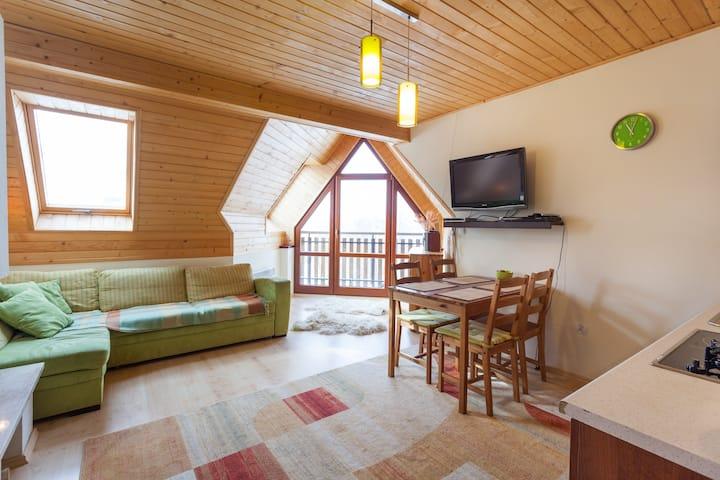 Apartament Zakopane Koscielisko