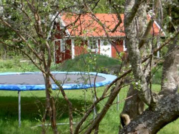 Basebo Gästehaus - familienfreundliches Ferienhaus