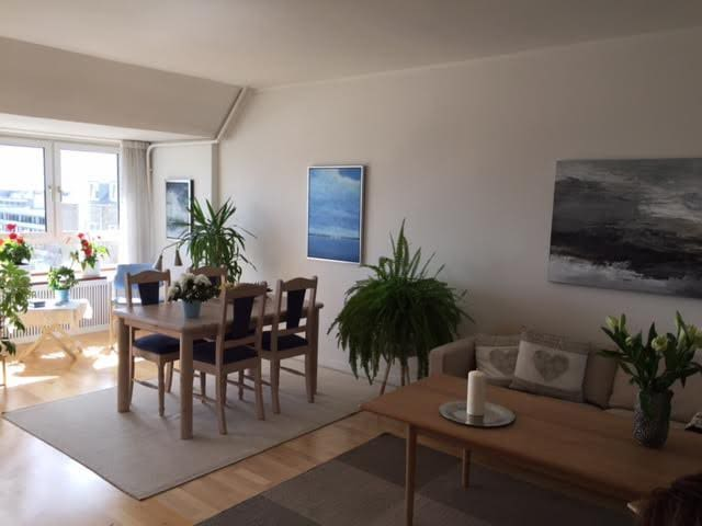 Spacious apartment - Frederiksberg