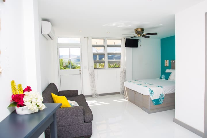 A True Caribbean Escape - Starfish Suite - Saint John's