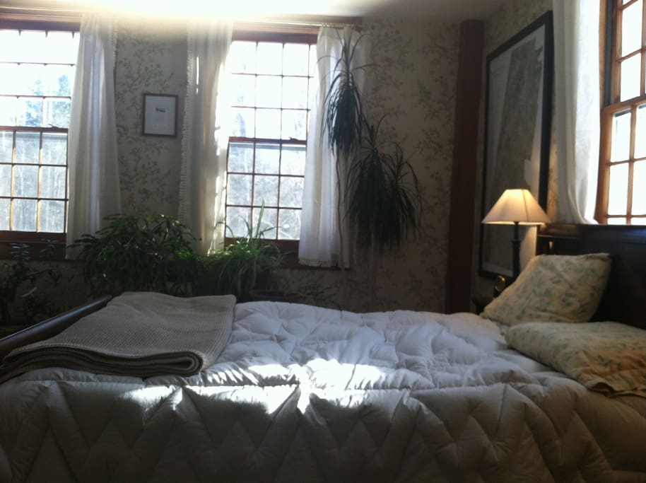 Mahogany sleighbed - 'tulip tree' room