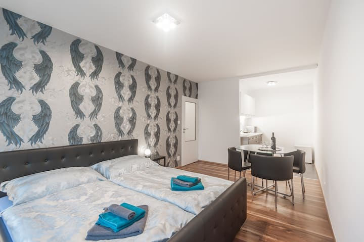 Luxurious Flat 12 minutes to centre