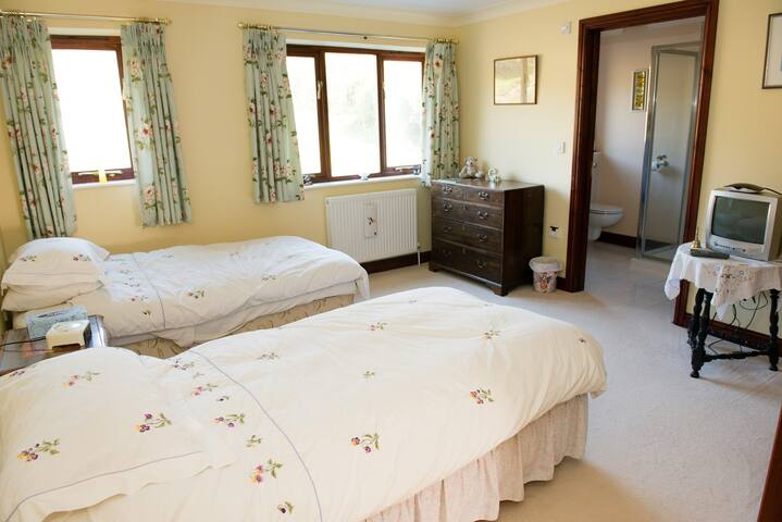Twin en-suite in country house. - Devon - Bed & Breakfast
