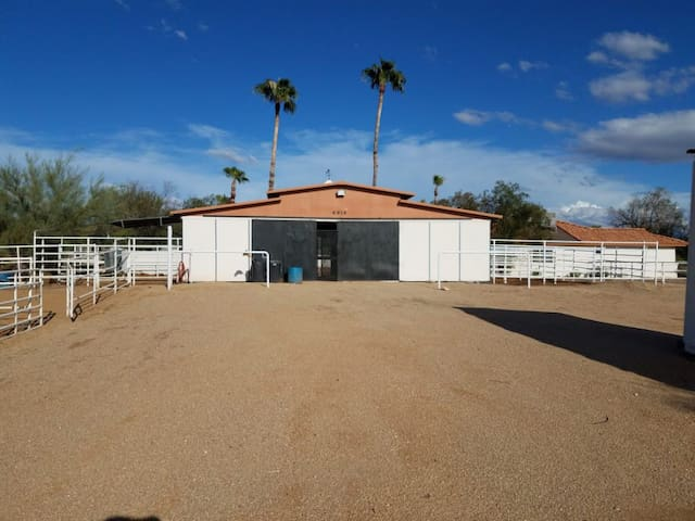 Horse boarding facility in north Scottsdale