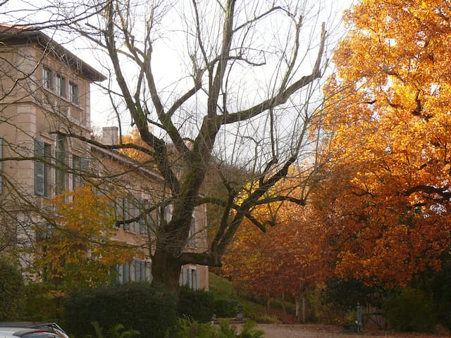 4 Chambres en dehors du temps - Saint-Germain-au-Mont-d'Or - Bed & Breakfast