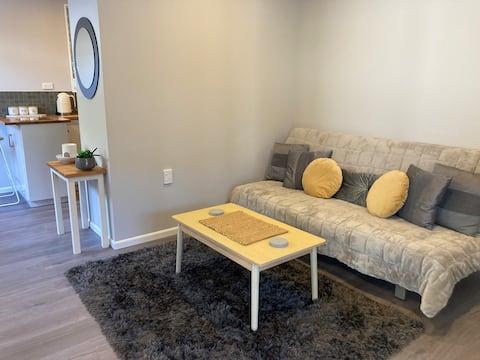 Modern, Light & Spacious Apartment in Wakatu