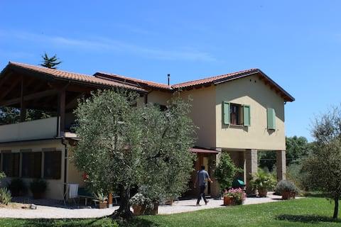 Quiet Apartment In Olive Grove