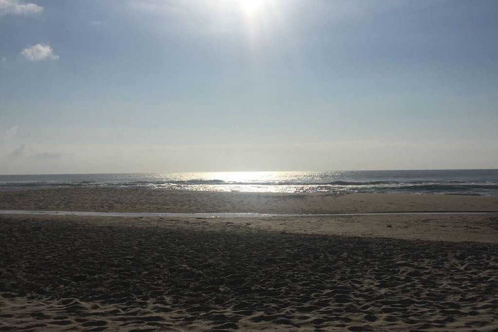 Mar do Campeche