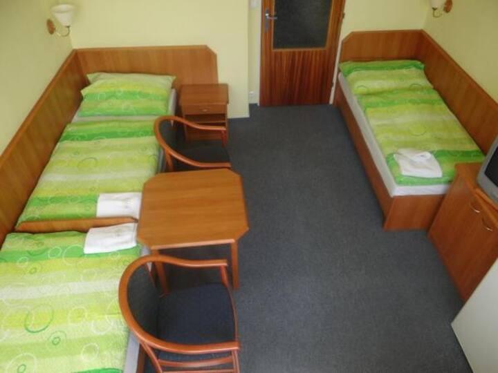 Třílůžkový pokoj v hotelu Slunce