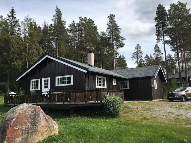 Cozy and charming cabin I Hemsedal
