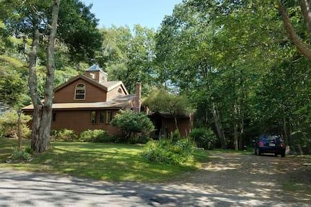 Contemporary Cedar Home - House