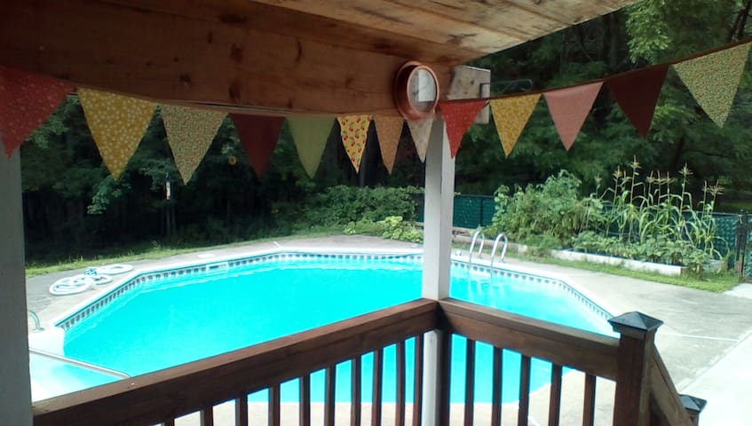 Saratoga Pool & Spa-Tranquil Sanctuary