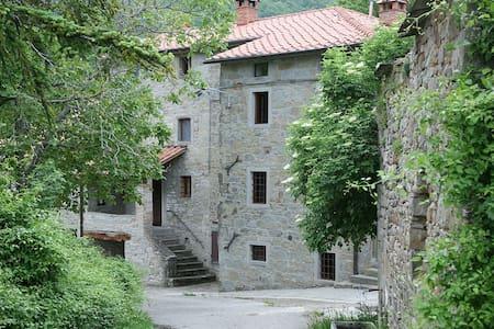 Delizioso rifugio in campagna. - Pieve Santo Stefano - Apartmen