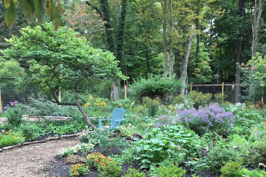 The pollinator garden in summer with a chair for reading