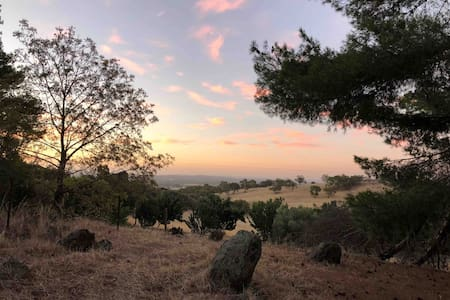 Pinecone Ridge, Barossa - your own 16 acres