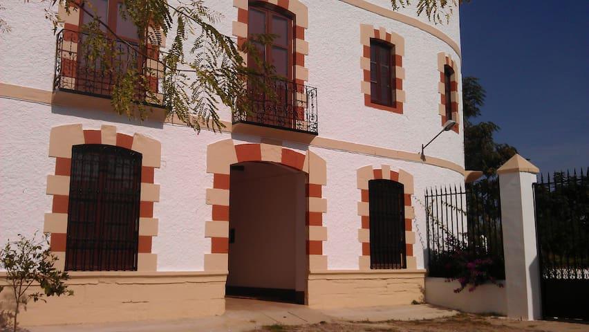 Casa del Manijero. Entre olivos. - Jaén - Villa