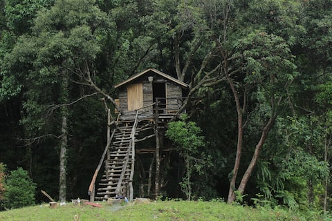 cloudline treehouse