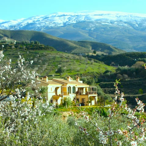 La Finca del Castillo Arabe Granada - Murchas - Bed & Breakfast