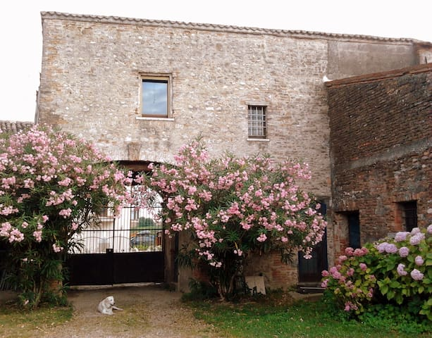 Holidays in a cottage near Verona! - Volon - Maison