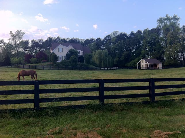 Luxury Country Equestrian Estate - Cumming - Casa