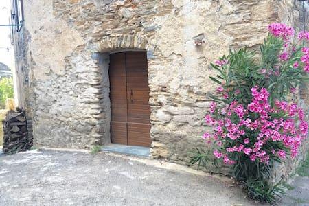 Pour 2p/20min de Saint Florent/T2 - Rapale