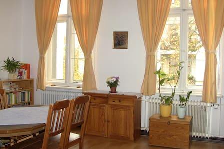 Schönes sonniges Zimmer in Berlin-Steglitz - Berlin - Daire