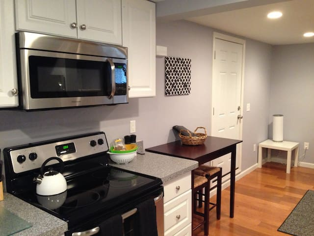 Executive Studio near Logan Airport - Revere