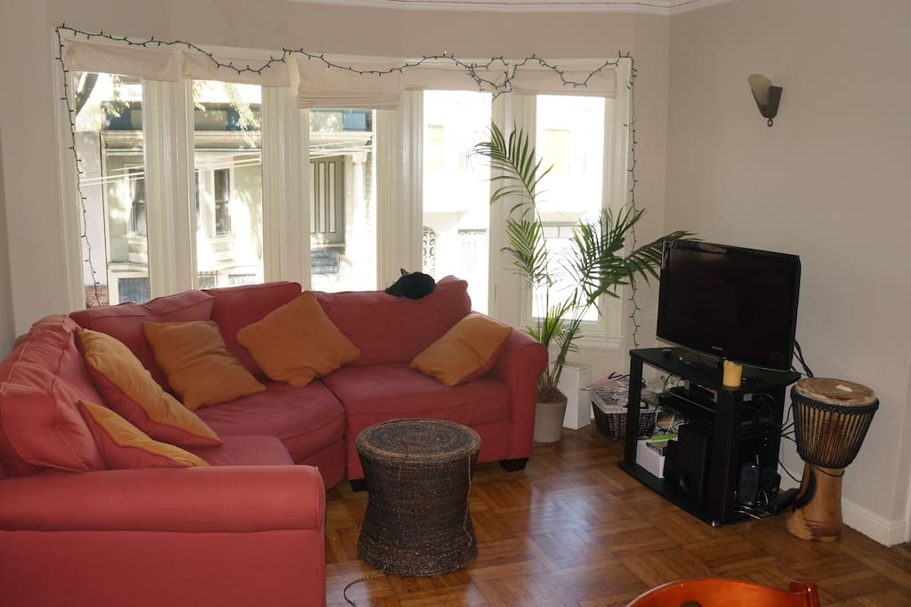 Living room, still with our cat, that passed away 2012