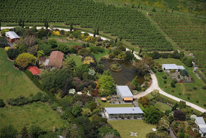 The garden and buildings from the air.
