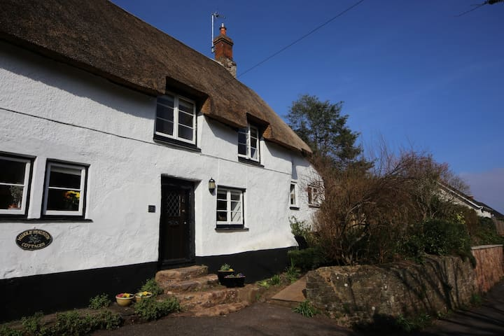 LITTLE HAVEN - Thatched Cottage - Minehead
