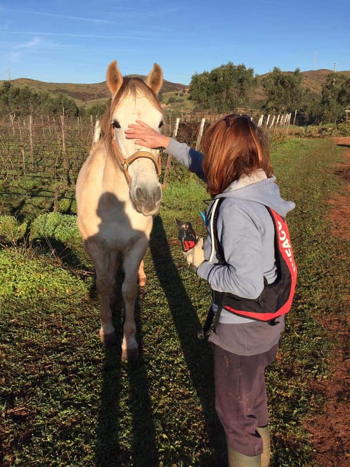 Renée  the with your beautiful horse