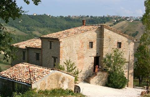 Quiet Organic vineyard & farmhouse, Central Italy.