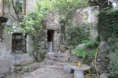 A flat in the Cevennes, Lozere - Vialas - Лофт