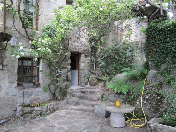 A flat in the Cevennes, Lozere