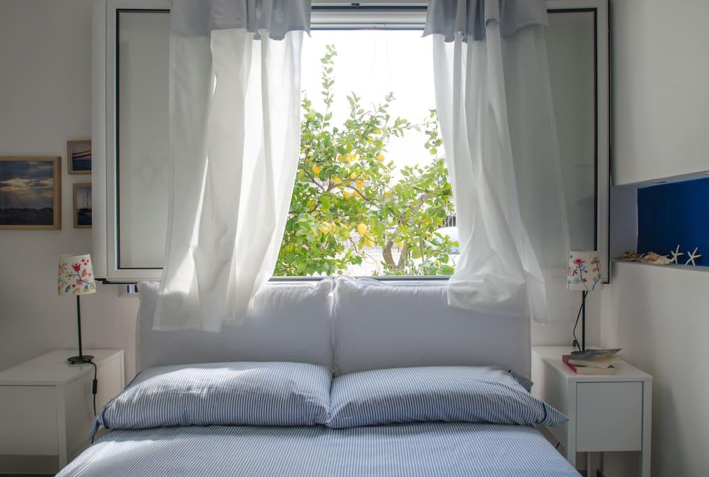 La casa dei limoni case in affitto a vieste puglia italia for Case a buon mercato 3 camere da letto
