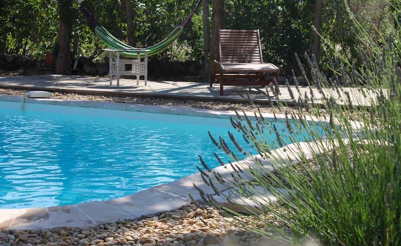 Swimming pool and hammocks