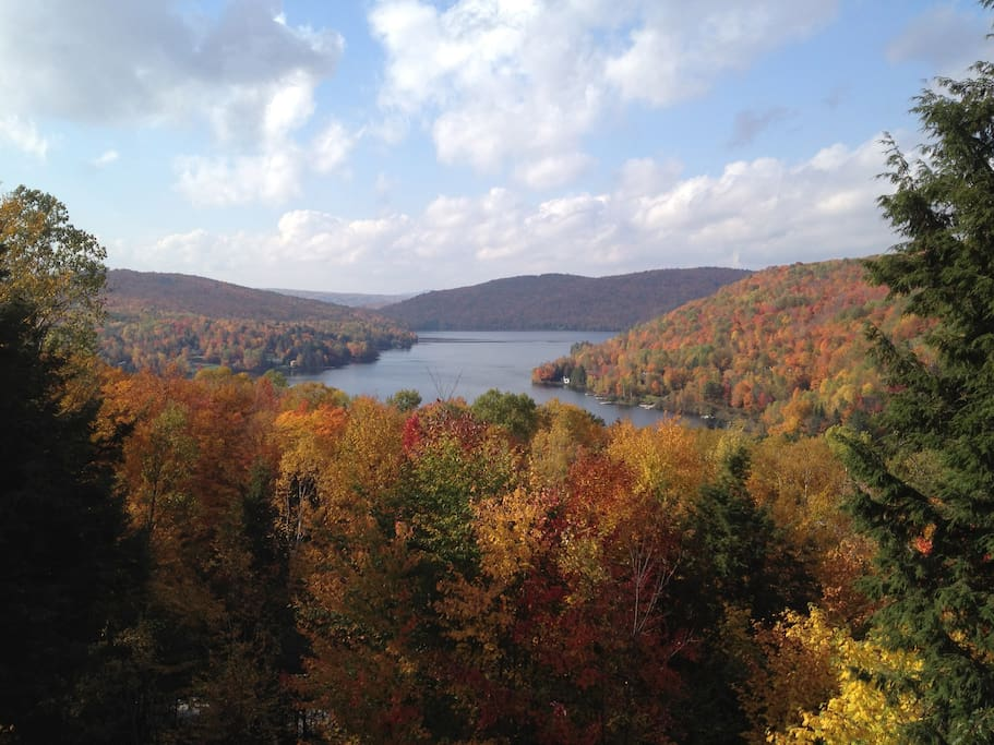 Fall view of our lake