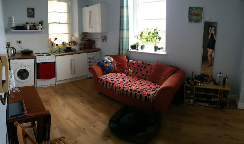 Lovely one bed flat in Clifton