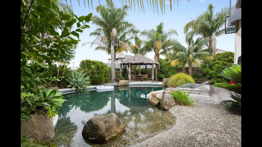 Oasis in the city 1km from town - Tauranga - Bed & Breakfast
