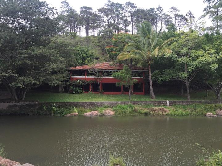 Finca Escondida / Hidden Farm