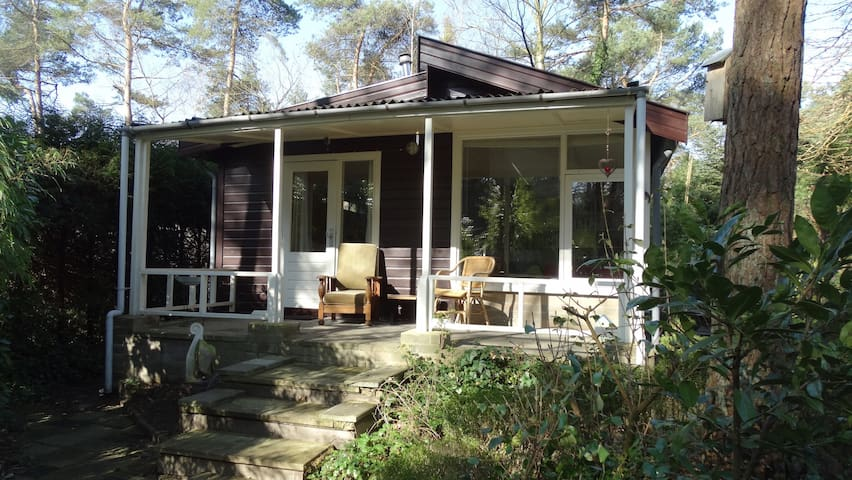 House in the woods - Oisterwijk - บ้าน