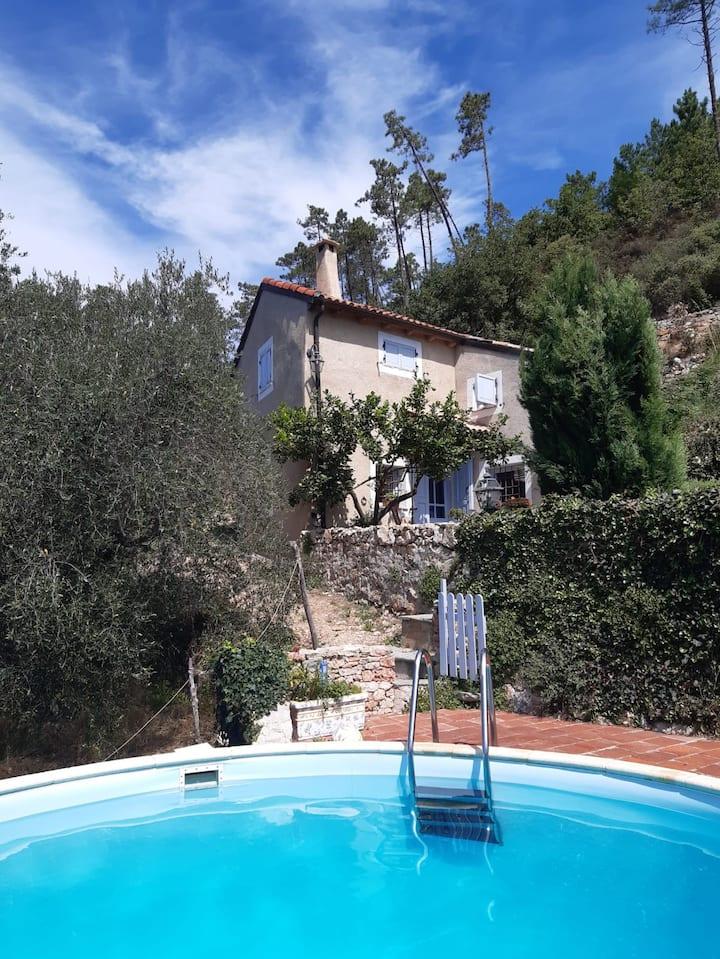 Casetta in mezzo agli olivi con piccola piscina
