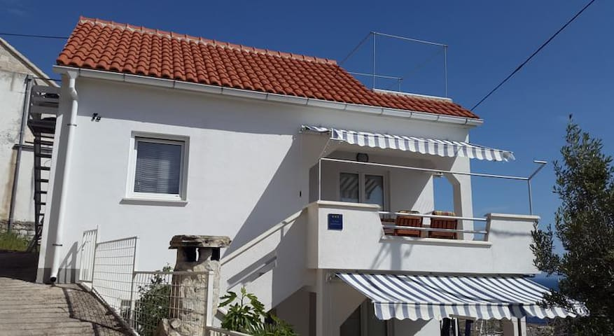 Villa Ljubinka sa jacuzzijem - kucni ljubimci - - Mimice - Talo
