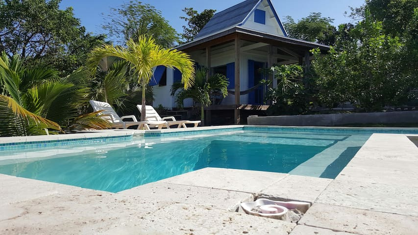 Waterfront & Pool, Tamarind Tree Cottage - Gregory Town - Daire