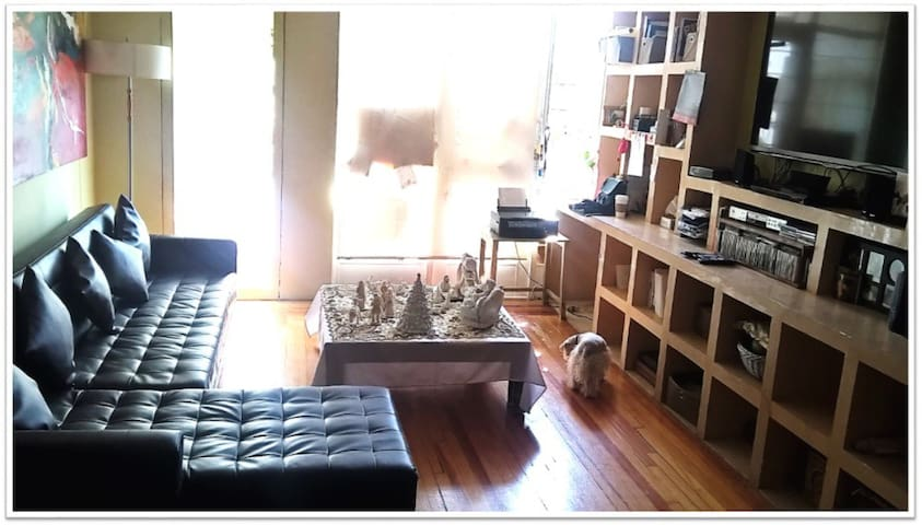 STUDIO IN THE BEST LOCATION IN MEXICO CITY