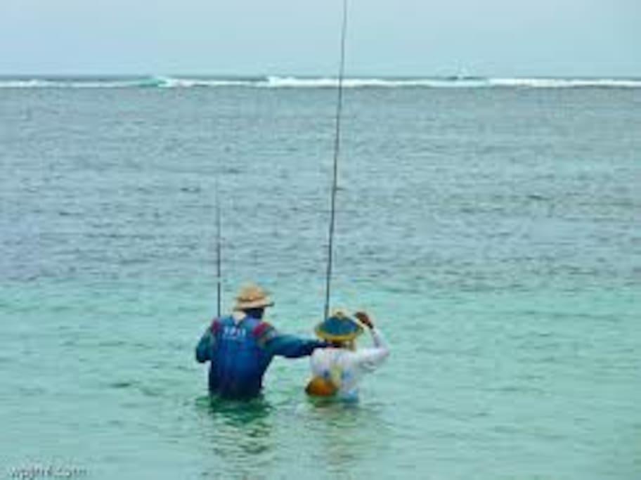 Go Fishing?