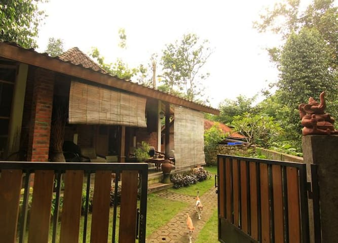 Omah Jegok 'Jungle' Homestay Room01