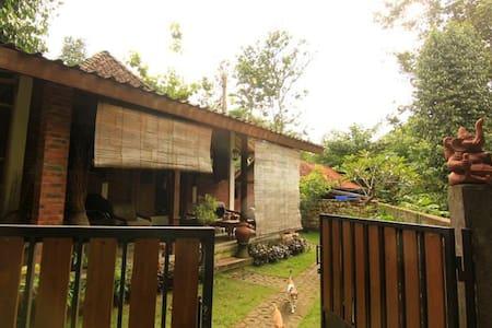 Omah Jegok 'Jungle' Homestay Room01